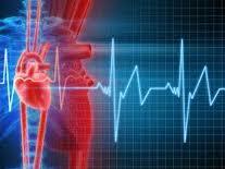 Obat Herbal jantung berdebar